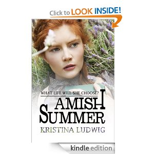 Amish summer website cover