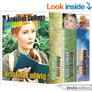 Amish in College Box Set
