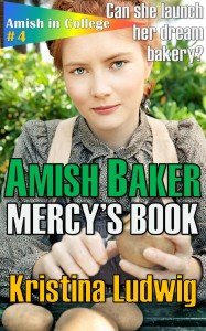 Here's the cover reveal for Amish Baker: Mercy's Book. What do you think?