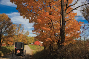 Amish country is so beautiful in the fall! Photo courtesy of akronlife.com